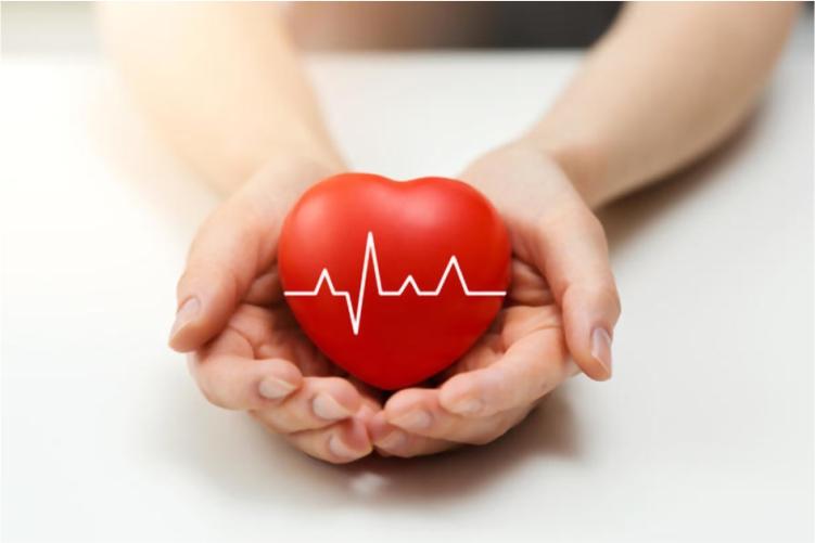 5ea963dee4dc1_Cardiology.jpg